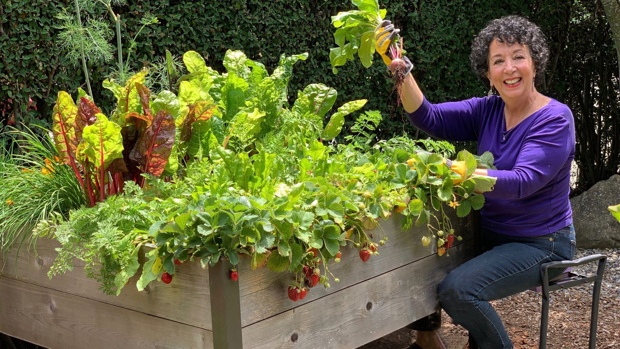Resilient Gardener Toni Gattone Growing Your Own Food With My Online Series