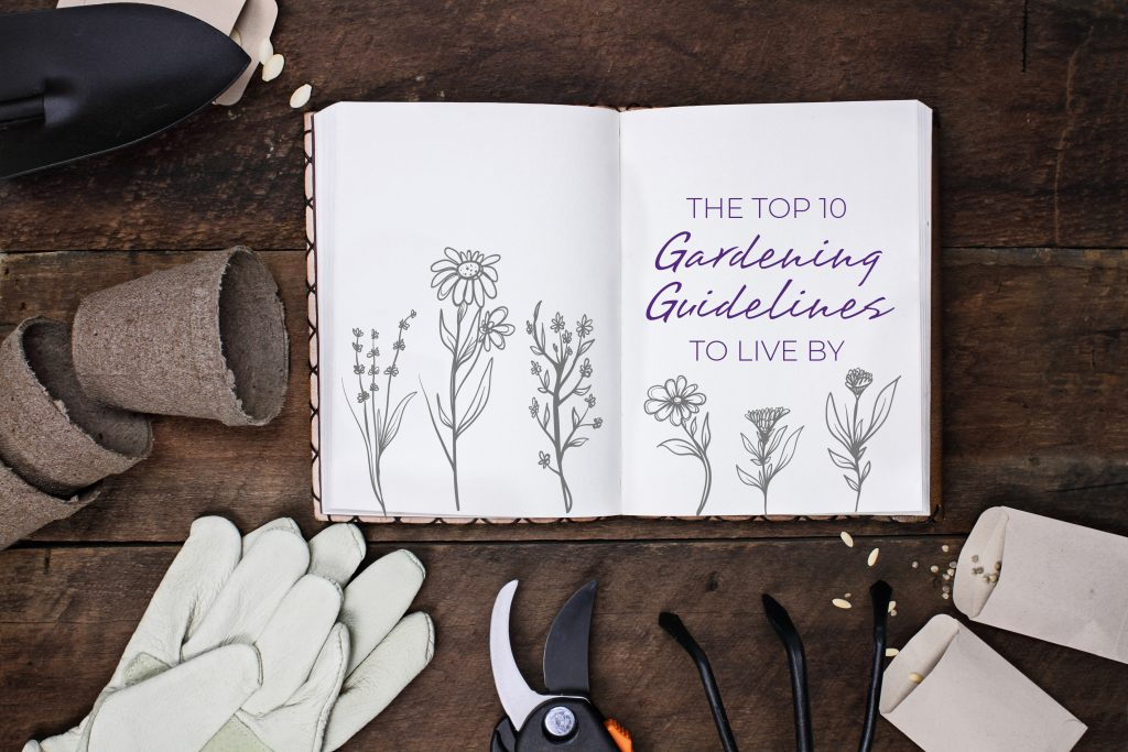 Gardening journal surrounded with tools, vegetable seeds and peat flower pots on a rustic wooden table. Image shot from above in flat lay style.
