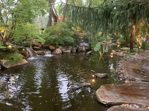 Japanese Maples transformed a two acre parcel into a virtual oasis filled with multiple Koi ponds and gorgeous stone walkways.